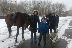 11 лошадки_1